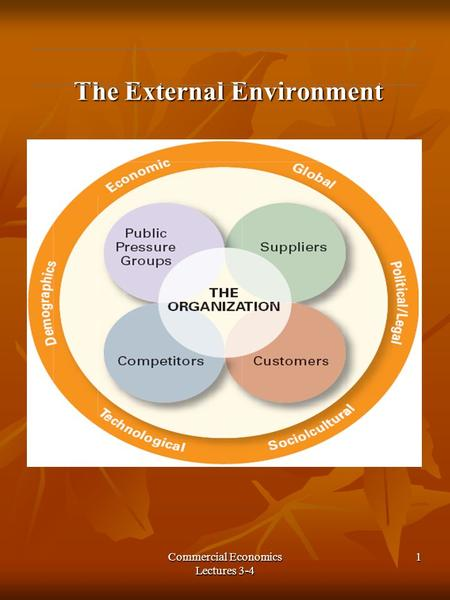 Commercial Economics Lectures 3-4 1 The External Environment The External Environment.