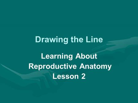 Drawing the Line Learning About Reproductive Anatomy Lesson 2.