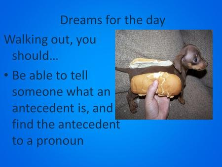 Dreams for the day Walking out, you should… Be able to tell someone what an antecedent is, and find the antecedent to a pronoun.