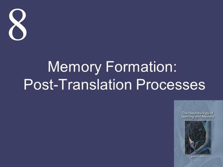 8 Memory Formation: Post-Translation Processes. The goal of this chapter and several that follow is to determine if some of the processes that have been.