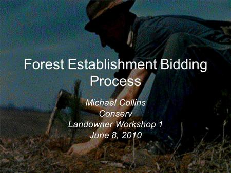 Forest Establishment Bidding Process Michael Collins Conserv Landowner Workshop 1 June 8, 2010.