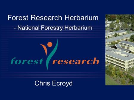 Forest Research Herbarium - National Forestry Herbarium Chris Ecroyd.