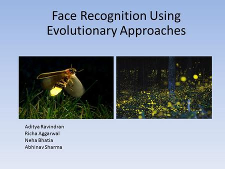 Face Recognition Using Evolutionary Approaches