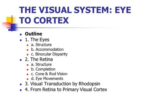 THE VISUAL SYSTEM: EYE TO CORTEX Outline 1. The Eyes a. Structure b. Accommodation c. Binocular Disparity 2. The Retina a. Structure b. Completion c. Cone.
