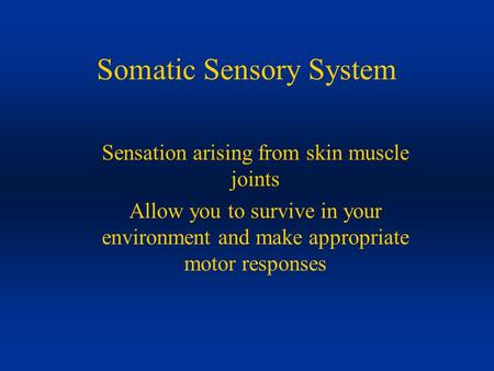 Somatic Sensory System Sensation arising from skin muscle joints Allow you to survive in your environment and make appropriate motor responses.
