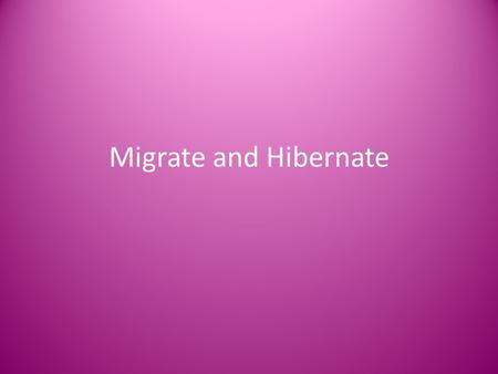 Migrate and Hibernate. Animals find ways to stay warm in the winter.