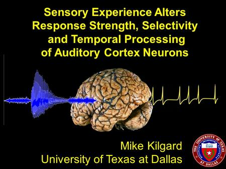 Sensory Experience Alters Response Strength, Selectivity and Temporal Processing of Auditory Cortex Neurons Mike Kilgard University of Texas at Dallas.