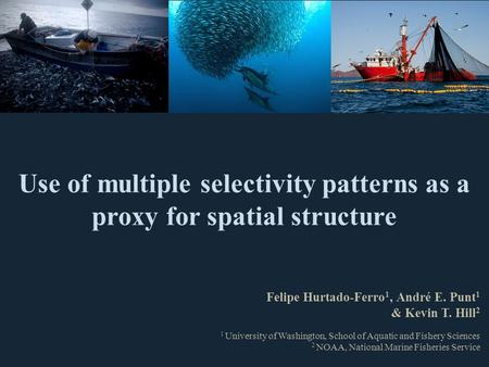 Use of multiple selectivity patterns as a proxy for spatial structure Felipe Hurtado-Ferro 1, André E. Punt 1 & Kevin T. Hill 2 1 University of Washington,