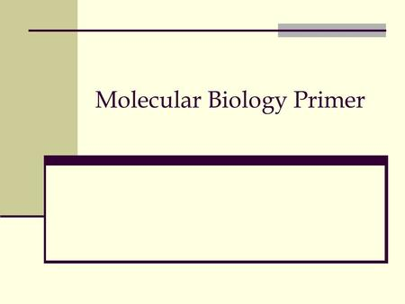 Molecular Biology Primer. Starting 19 th century… Cellular biology: Cell as a fundamental building block 1850s+: ``DNA'' was discovered by Friedrich Miescher.