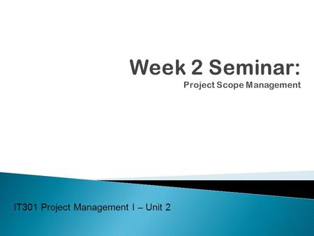 Week 2 Seminar: Project Scope Management