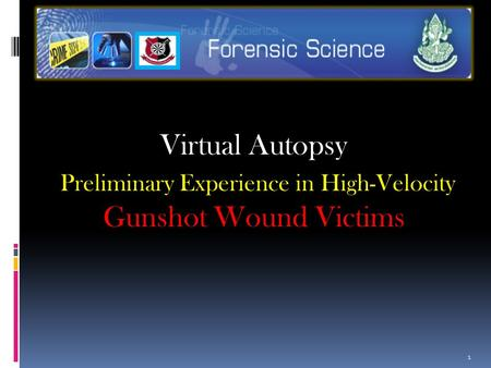 Virtual Autopsy Preliminary Experience in High-Velocity Gunshot Wound Victims 1.