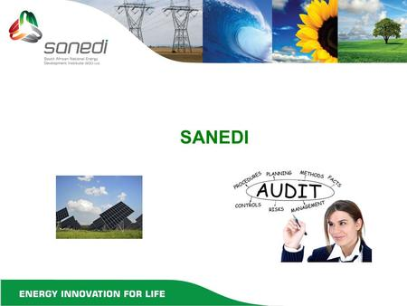 SANEDI. INDEX  KEY ACTIVITIES DURING FINANCIAL YEAR  DISCUSSIONS ON KEY ACTIVITIES  CONCLUSION  APPRECIATION.