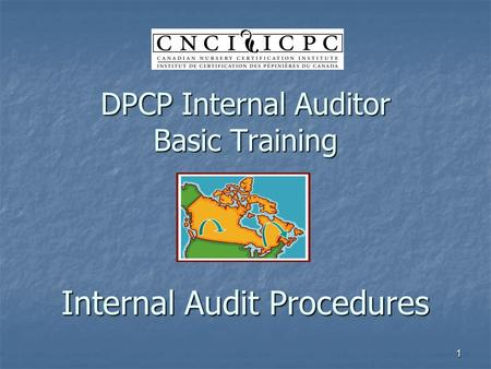 1 DPCP Internal Auditor Basic Training Internal Audit Procedures.