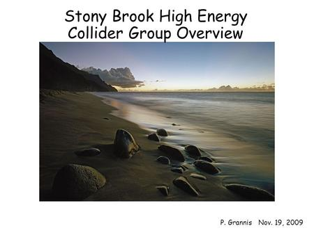 Overview1 Stony Brook High Energy Collider Group Overview P. Grannis Nov. 19, 2009.