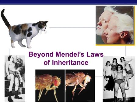 Beyond Mendel's Laws of Inheritance