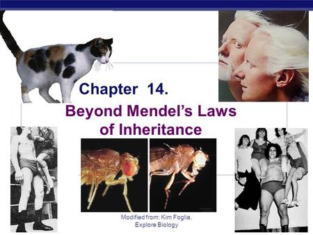 AP Biology 2005-2006 Modified from: Kim Foglia, Explore Biology Chapter 14. Beyond Mendel's Laws of Inheritance.