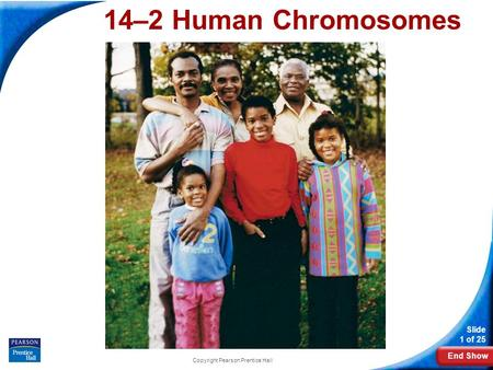 End Show Slide 1 of 25 Copyright Pearson Prentice Hall 14–2 Human Chromosomes 14-2 Human Chromosomes.