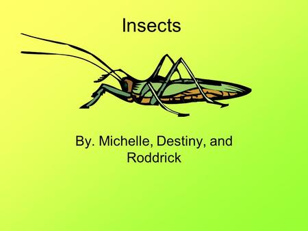 Insects By. Michelle, Destiny, and Roddrick. Customers Protein seekers People who enjoy eating bugs Little kids.