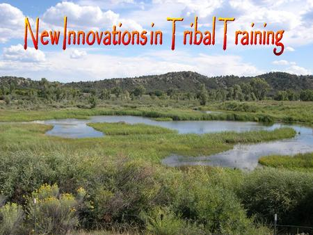 New Innovations in Tribal Training Paul Andrews – RTI International Michiko Burns – Southern Ute Tribe Dave Wilcox – Gold Systems Inc Austin, TX November.