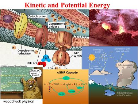 Kinetic and Potential Energy. Potential Energy An object can have potential energy by virtue of its surroundings. Familiar examples of potential energy: