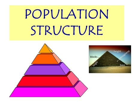 POPULATION STRUCTURE OBJECTIVES At the end of this lesson you should be able to… Interpret population pyramids for MDCs and LDCs Calculate dependency.