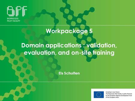 Workpackage 5 Domain applications : validation, evaluation, and on-site training Els Schulten.