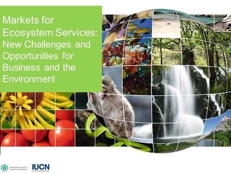 IUCN, WBCSD, Sep 2007 Markets for Ecosystem Services: New Challenges and Opportunities for Business and the Environment.