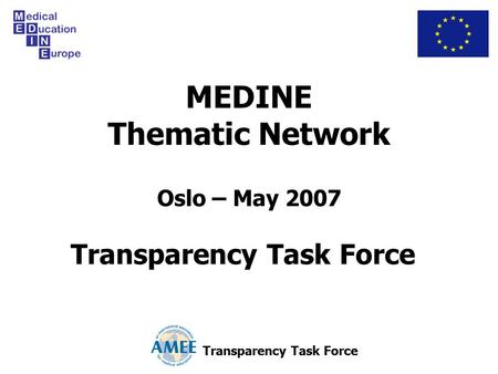 MEDINE Thematic Network Oslo – May 2007 Transparency Task Force.
