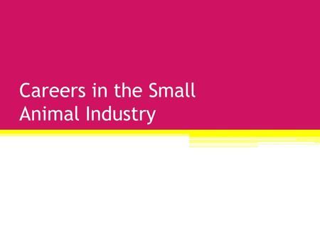 Careers in the Small Animal Industry. Trainer/ Behaviorist.