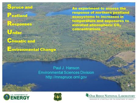 S pruce and P eatland R esponses U nder C limatic and E nvironmental Change Paul J. Hanson Environmental Sciences Division  An.