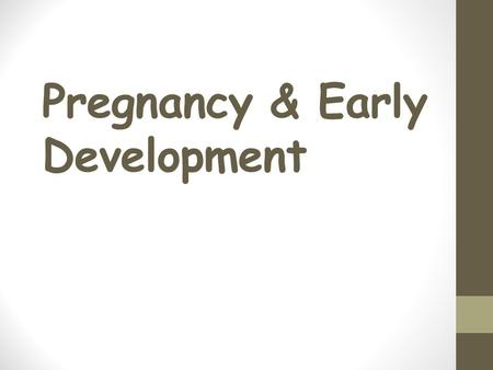 Pregnancy & Early Development How does life begin? Fertilization or conception Joining of the sperm and egg Takes place in the FALLOPIAN TUBE Zygote: