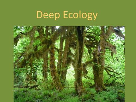deep ecology essays