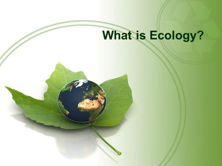 What is Ecology?. Questions for Today: What is the Basic Building Block of Life? How many species are there in the World? What are the levels of organization.