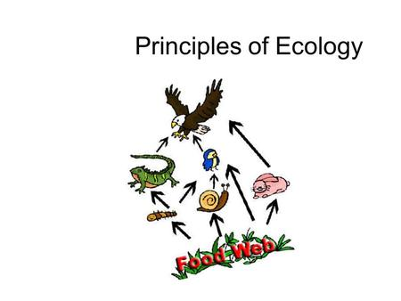 Principles of Ecology. What is Ecology? What is a key theme in Ecology??? Using your given cards, form a pair: One even & one odd number  Share what.
