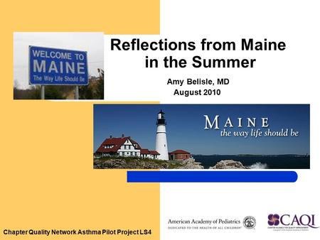 Chapter Quality Network Asthma Pilot Project LS4 Reflections from Maine in the Summer Amy Belisle, MD August 2010.
