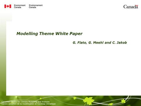 Modelling Theme White Paper G. Flato, G. Meehl and C. Jakob.