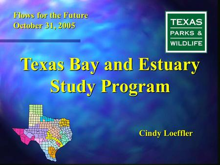 Texas Bay and Estuary Study Program Cindy Loeffler Flows for the Future October 31, 2005.