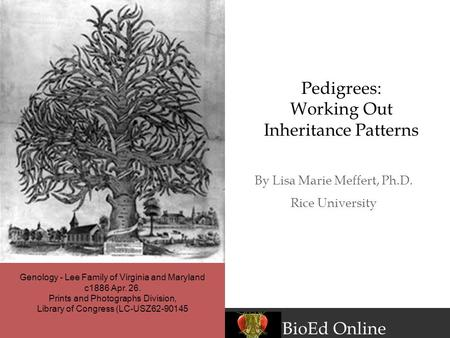 BioEd Online By Lisa Marie Meffert, Ph.D. Rice University Pedigrees: Working Out Inheritance Patterns Genology - Lee Family of Virginia and Maryland c1886.