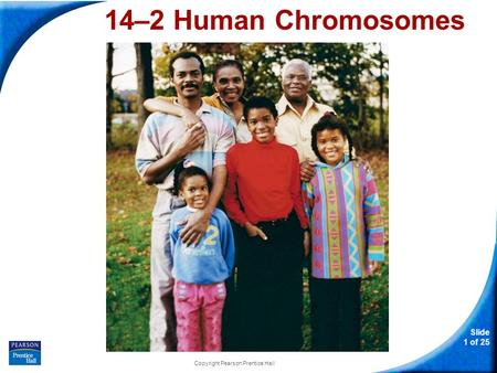 Slide 1 of 25 Copyright Pearson Prentice Hall 14–2 Human Chromosomes 14-2 Human Chromosomes.