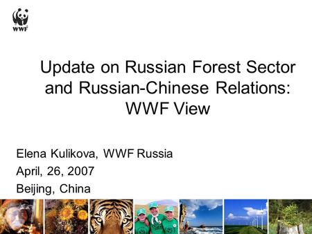 Update on Russian Forest Sector and Russian-Chinese Relations: WWF View Elena Kulikova, WWF Russia April, 26, 2007 Beijing, China.
