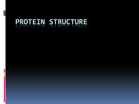 Protein Structure  Primary Structure – The order of amino acids.  Secondary Structure – The coiling or folding of the primary structure. This is facilitated.