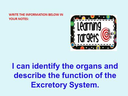 WRITE THE INFORMATION BELOW IN YOUR NOTES: I can identify the organs and describe the function of the Excretory System.