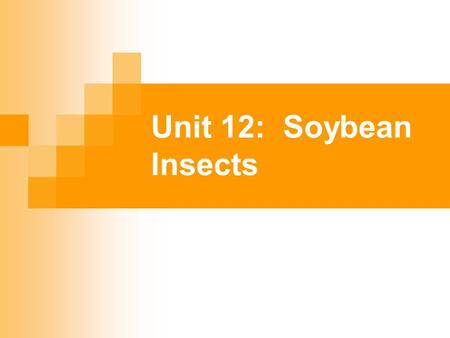 Unit 12: Soybean Insects. Carefully monitor both damaging and beneficial insects through scouting Have knowledge of economic thresholds for insect damage.
