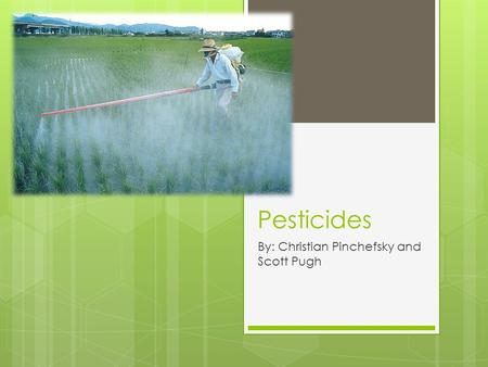 Pesticides By: Christian Pinchefsky and Scott Pugh.