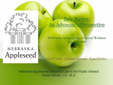 Safe Haven: An Advocate's Perspective Nebraska Association of Social Workers January 2009 Nebraska Appleseed Center for Law in the Public Interest Sarah.