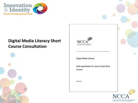 Digital Media Literacy Short Course Consultation.