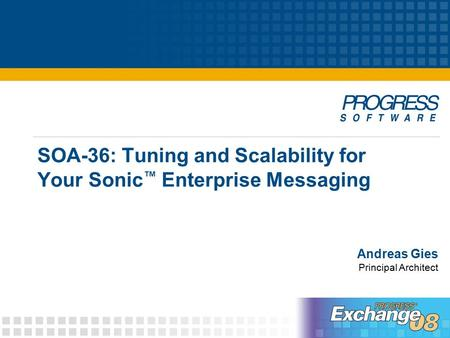 SOA-36: Tuning and Scalability for Your Sonic ™ Enterprise Messaging Andreas Gies Principal Architect.
