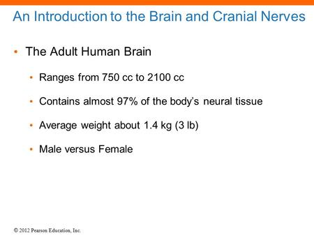 © 2012 Pearson Education, Inc. An Introduction to the Brain and Cranial Nerves The Adult Human Brain Ranges from 750 cc to 2100 cc Contains almost 97%