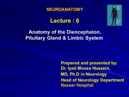 NEUROANATOMY Lecture : 6 Anatomy of the Diencephalon, Limbic System Pituitary Gland & Prepared and presented by: Dr. Iyad Mousa Hussein, MD, Ph.D in Neurology.