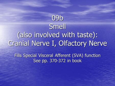 09b Smell (also involved with taste): Cranial Nerve I, Olfactory Nerve Fills Special Visceral Afferent (SVA) function See pp. 370-372 in book.